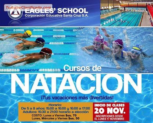 Nataci n en el eagles 39 school para ni os y adultos for Clases de piscina para ninos