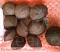 Meelko Prensa para hacer carbon en briquetas 15 Toneladas hora - MKBC15.