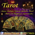 tarot-videncia-endulzamiento-amarres-51937306816-2316-5.jpg